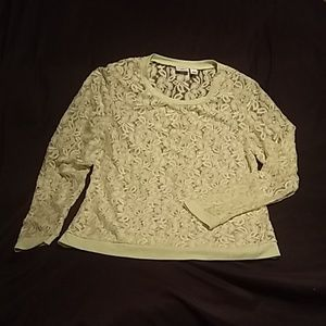 Cato Large Lace Top Bright Yellow